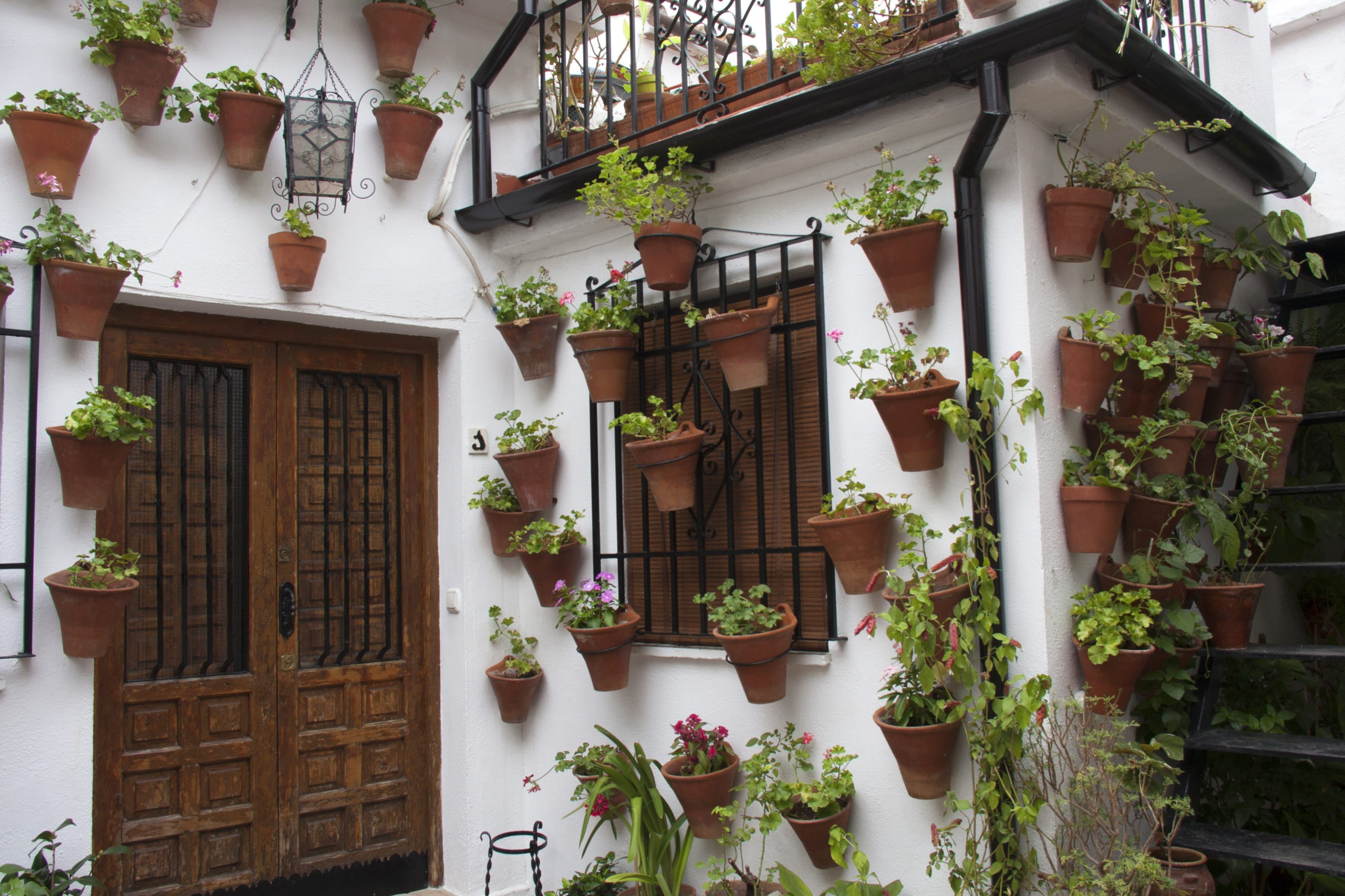 Andalusian patio facade decorated with pots and hanging plants.